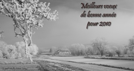 bonne-annee-2010_2