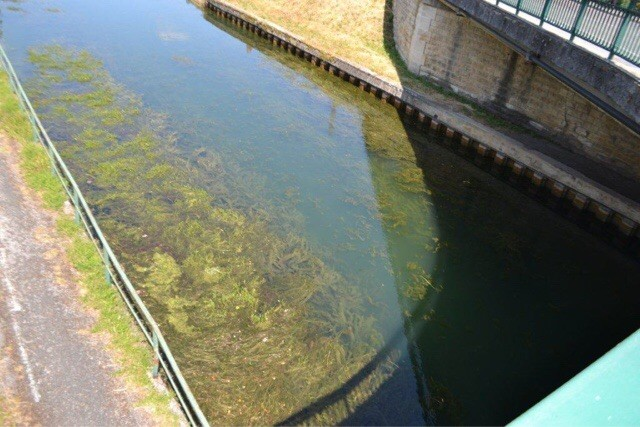 Joinville canal d'Heuilley